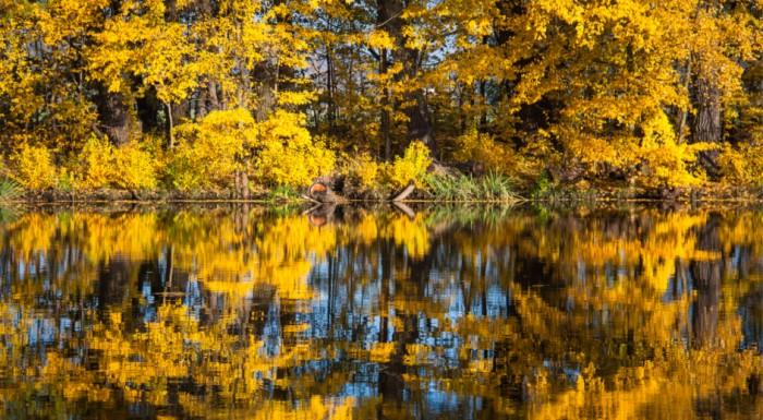 Autumn trip to Wilanów Park