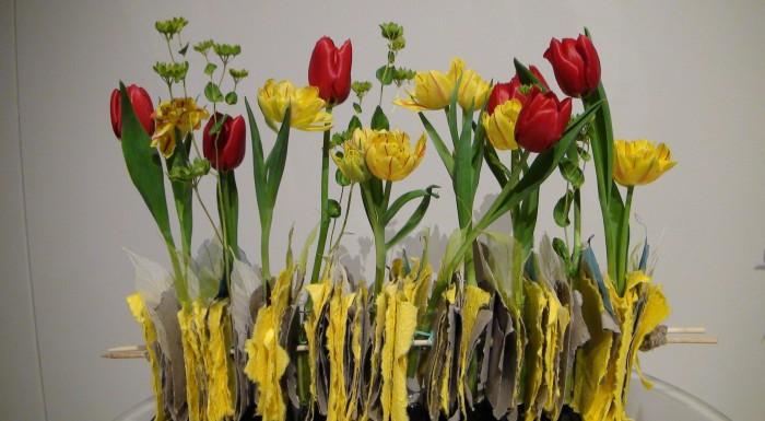 8th Tulip Exhibition