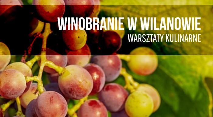 Grape Harvesting at Wilanów