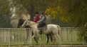 Horse riding lessons at Partynice