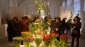 XI Tulip Exhibition at Wilanów