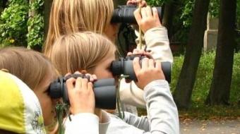 Letnie obserwacje ornitologiczne